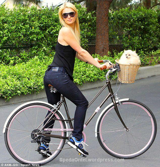 Paris Hilton onthel